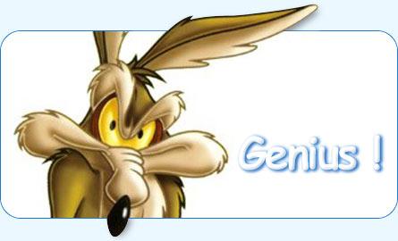 wile-coyote- i'm a genius