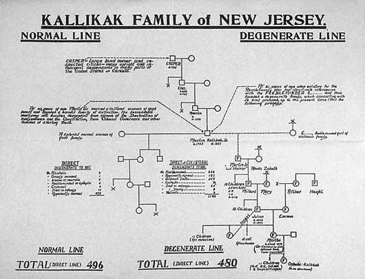 chart_Kallikak_pedigree2 eugenics