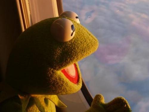 Kermit - omigod its a UFO