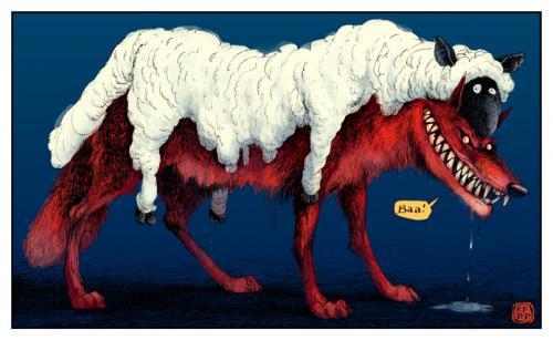 wolf_193395