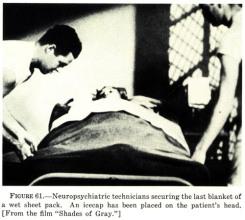 Neuropsychiatry - halloran menninger rees tavistock wetpack therapy2