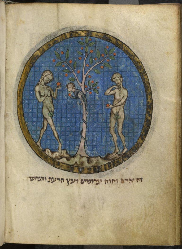 Add. 11639  f.520v