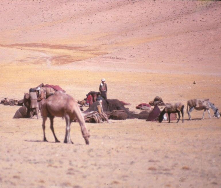 terry on caravan afghanistan
